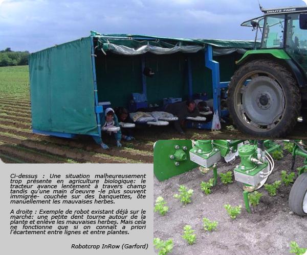 Un robot capable de d truire les mauvaises herbes forumphyto for Detruire les mauvaises herbes