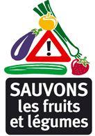 Logo CSLFLF