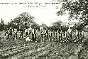 Travail manuel dans les champs au début du XXe siècle (Coll. J.L. Bernard)