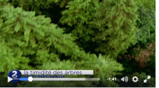 1610VideoTimidite