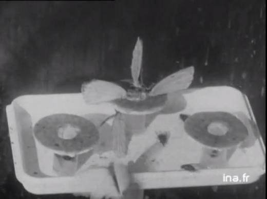 1701LutteBiologique-1961-INRA